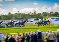 Compass Associates End of Quarter October 2017 Fontwell Racecourse