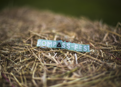 Compass Fest 2016 Wristband photo by Nicole Hains